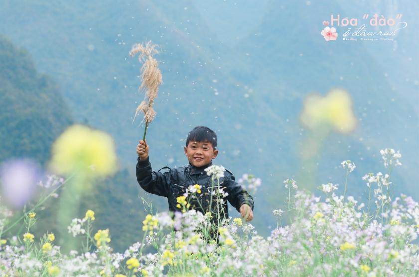 mùa hoa đào Hà Giang