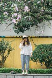 mùa hoa ban Hà Nội