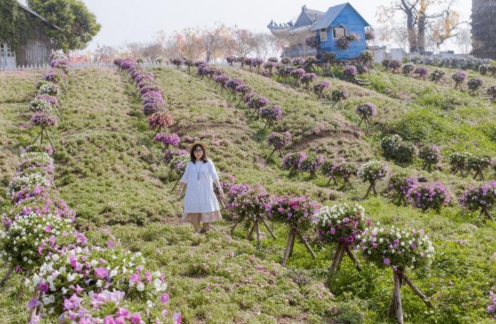 Một nơi nhiều hoa cỏ:)